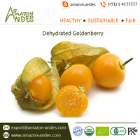 Wholesale Low Price Goldenberry Dried Fruit