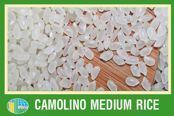 BEST SELLING-GOOD RICE FOR GOLDEAN HEALTH-CAMOLINO WHITE RICE 5% BROKEN-LOWEST PRICE FROM VIETNAM