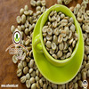 Coffee Bean with Best Indian Quality