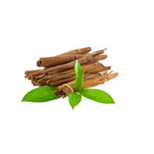 Organic Cinnamon Leaf Oil From AROMAAZ INTERNATIONAL