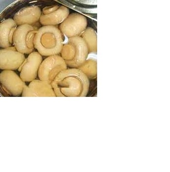 best quality Canned mushrooms for sale at good price