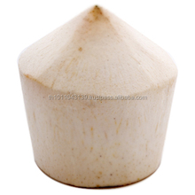 Fresh Thai Young Coconut for sale
