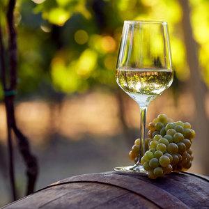NEW Harvest Bulk Varietal Chardonnay White Wine From Argentina Mendoza Spain Family