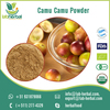 /product-detail/supplier-of-protein-rich-fresh-and-dried-camu-camu-powder-at-low-cost-50035488931.html
