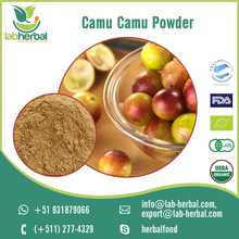 Supplier of Protein Rich Fresh and Dried Camu Camu Powder at Low Cost