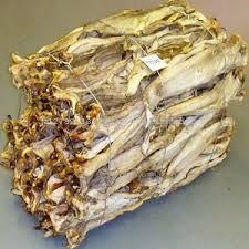 Grade A Quality Dried StockFish for Sale