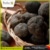 Tuber Melanosporum Fresh Truffles From Spain