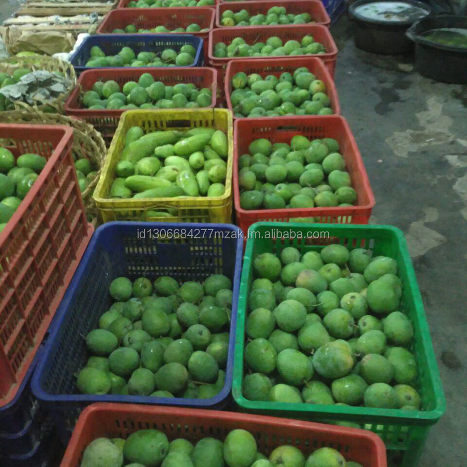 Grade A Mango Harumanis. Fresh Mango from Indonesia with Best Quality and Best Price