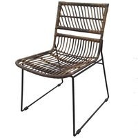 Natural Rattan Chair Metal Leg Leisure Living Room Furniture