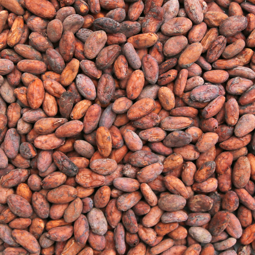 100% High Quality Cocoa Beans