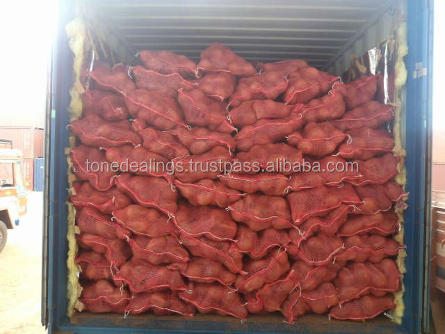 Semi Husked Coconut Hot Sale, Best Price
