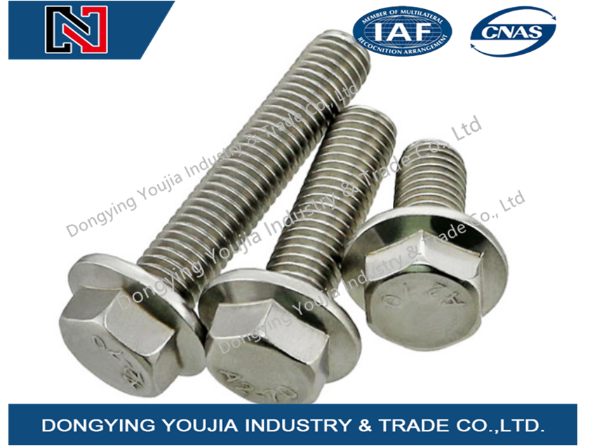 GB5789 M10 Stainless Steel Large Hexagon flange bolt