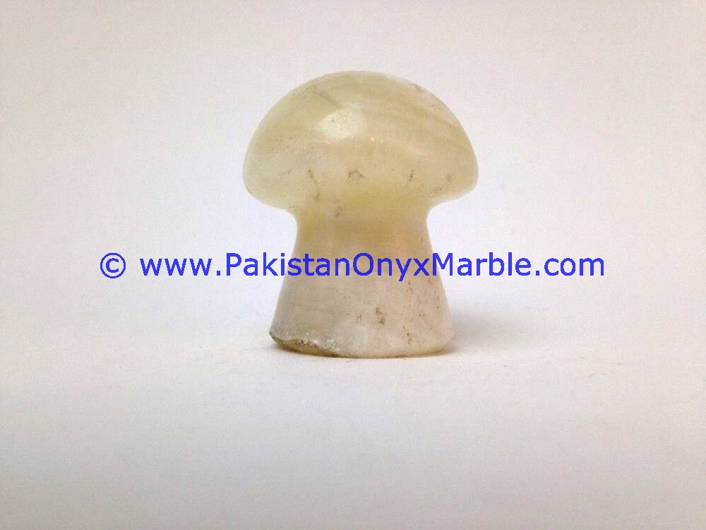PAKISTAN SUPPLIER MARBLE PAPERWEIGHTS MUSHROOM SHAPE NATURAL STONE HANDCARVED OFFICE DESK TABLE DECOR GIFTS