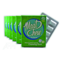 Best Quality Sugar-Free Mint Flavour HACCP-certified Blister Packed Natural Organic Chewing Gum Mast Chew (Mastic)