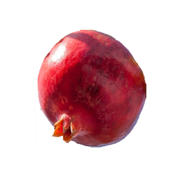Supply Super Best Quality Pomegranate From India