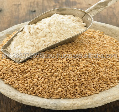 Fresh Wheat Flour Manufacture / Supplier from Thailand