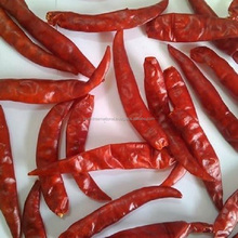Wholesale best quality red dry indian chili teja s17 without stem or with stem