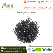 Organic Hot Selling Black Wholesale Quinoa