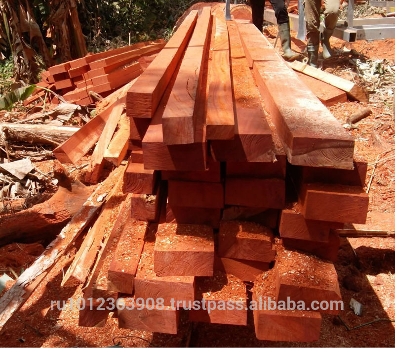 Explicit offer for LOW PRICE AZOBE WOOD Quality Timber sawn logs african hardwoods