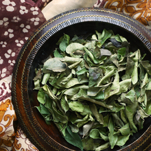 premium quality curry leaves