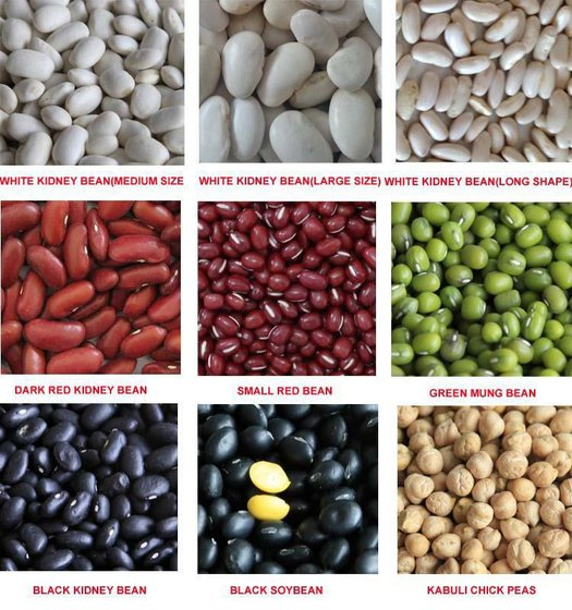 New White / Red / Black Kidney Beans