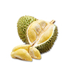 Durian Fruit Juice Powder/Fruit Juice Extract