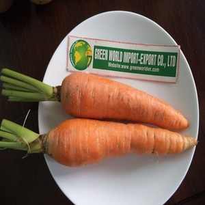 HOT PRODUCT: DRIED CARROT WITH BEST QUALITY