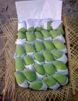 Vietnam Fresh Mango - High Quality - Natural Sweet - Best Price