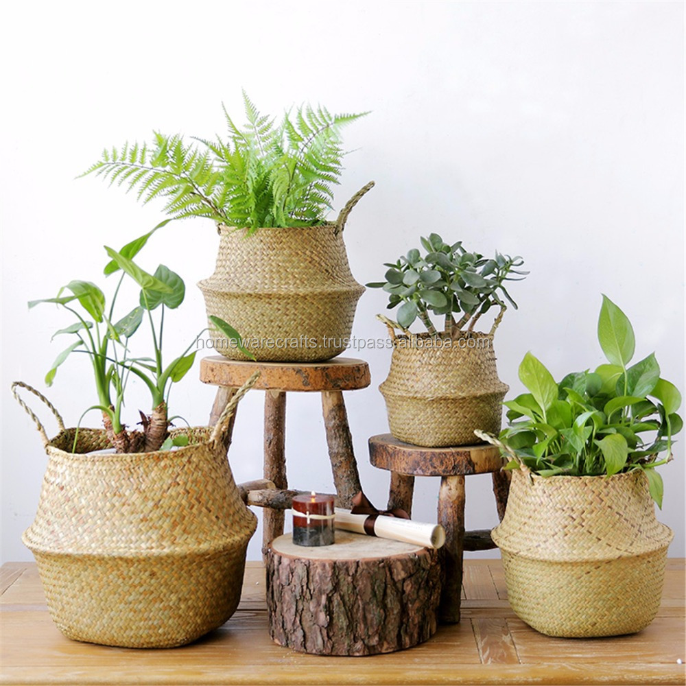 Home decoration seagrass planter pot/ belly seagrass basket in Vietnam