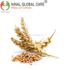 /product-detail/finest-quality-wheat-in-india-50034512177.html