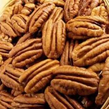 Top Quality Pecan Nut Prices