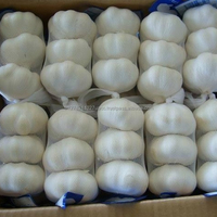 4cm Pure White Fresh Garlic Affordable