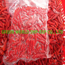 PREMIUM QUALITY FROZEN RED CHILI WITH BEST PRICE FOR NOW