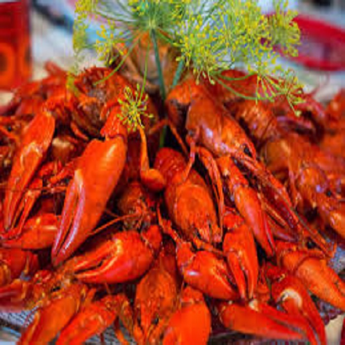New Process Frozen Whole Round Crayfish/Crawfish in Lobster for sale