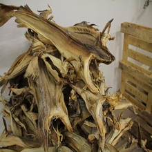 Norwaygian Dried Stock Fish,Cod, /Dried Stock Fish Heads