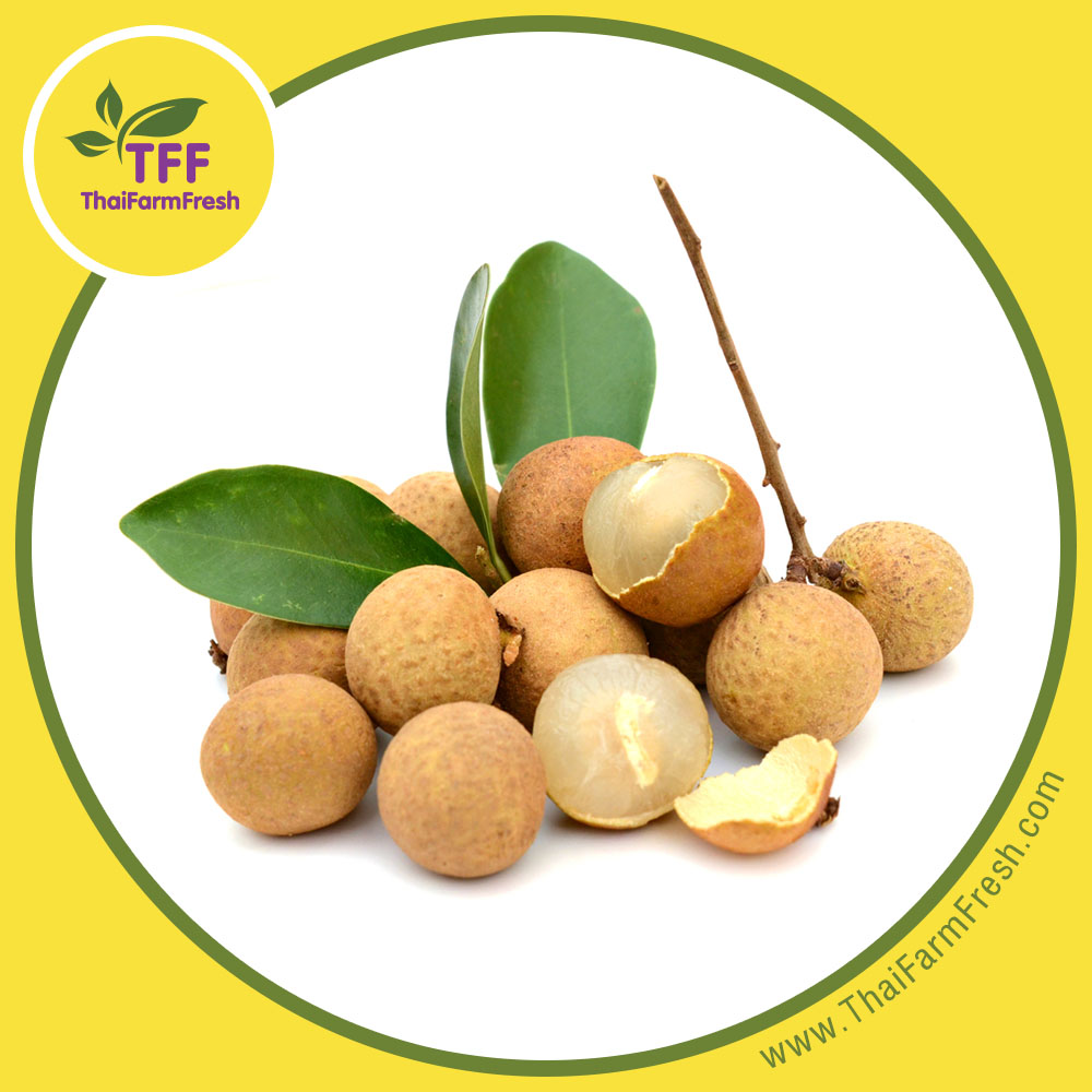 PREMIUM FRESH LONGAN, Product of Thailand