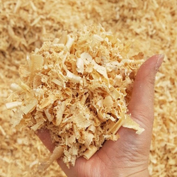 BEST QUALITY 100% PINE WOOD SHAVINGS FOR HORSE BEDDING