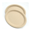 Biodegradable Disposable Food Storage Sugarcane Plate