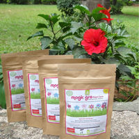 Chemical Free Plant Care For Home