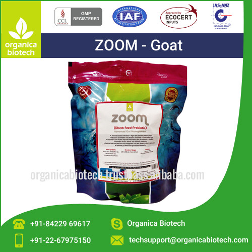 Growth promoter probiotic for dairy goat farming in kenya