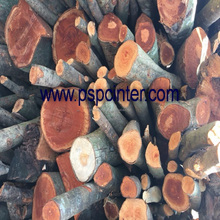 Dried Firewood Lowest price