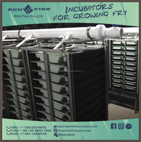 10 Tray Vertical Incubator For Growing