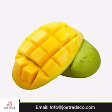 Egyptian best grade fruit best taste green fresh mango price exporter