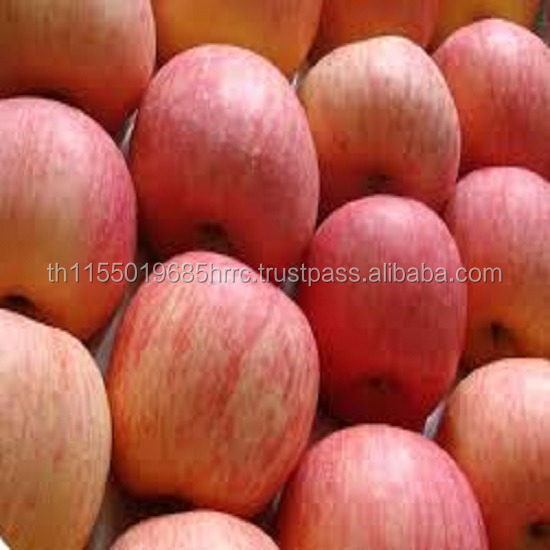 Thailand Fuji apple price on sale apple fruit fresh fuji for export