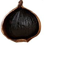 Fermentation Solo garlic - Black Garlic Bulbs - WHATSAPP +84 845639639