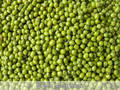 Green Mung Beans with low price for sale