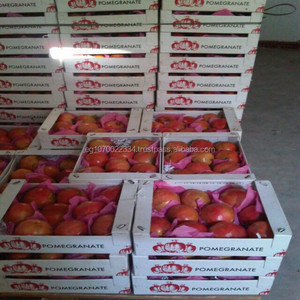 Fresh Sweet Delicious POMEGRANATE Supplier