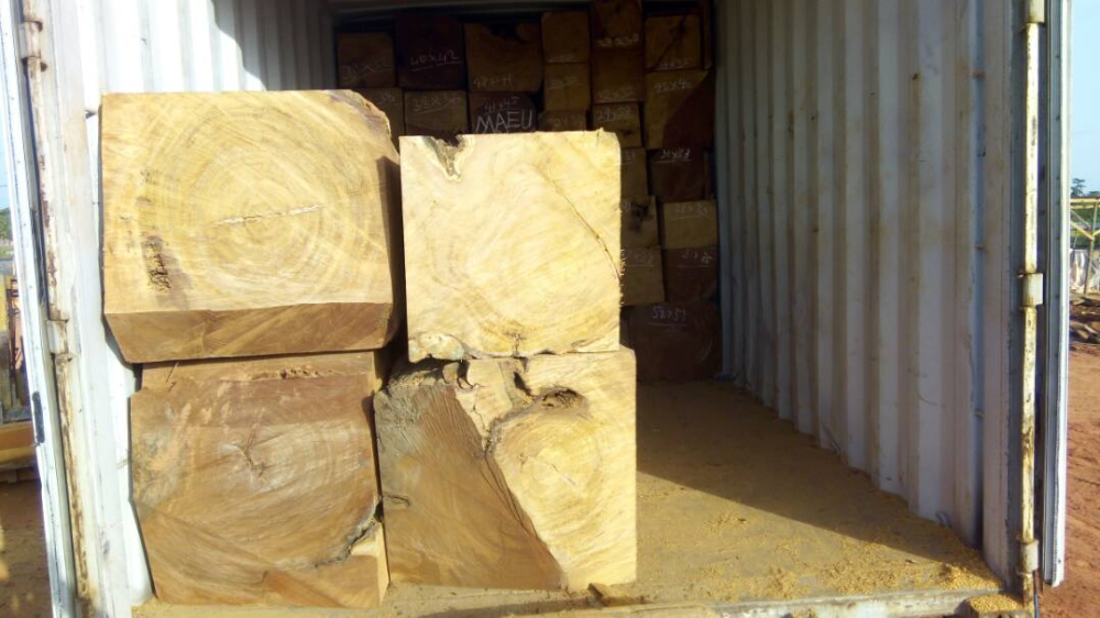 Dressed Papao Timber Logs