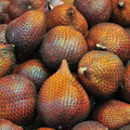 Fresh Salak Fruit (Snake Fruit) Salacca Zalacca Snakeskin Snake Skin Organic Production from Ecuador, South America