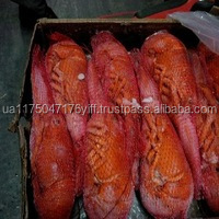 High Quality Cooked & Peeled Frozen Crayfish